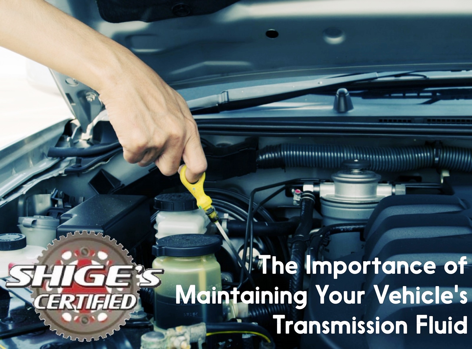 The Importance of Maintaining Your Vehicle's Transmission Fluid